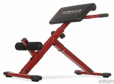 x hyper bench adjustable abs back extension